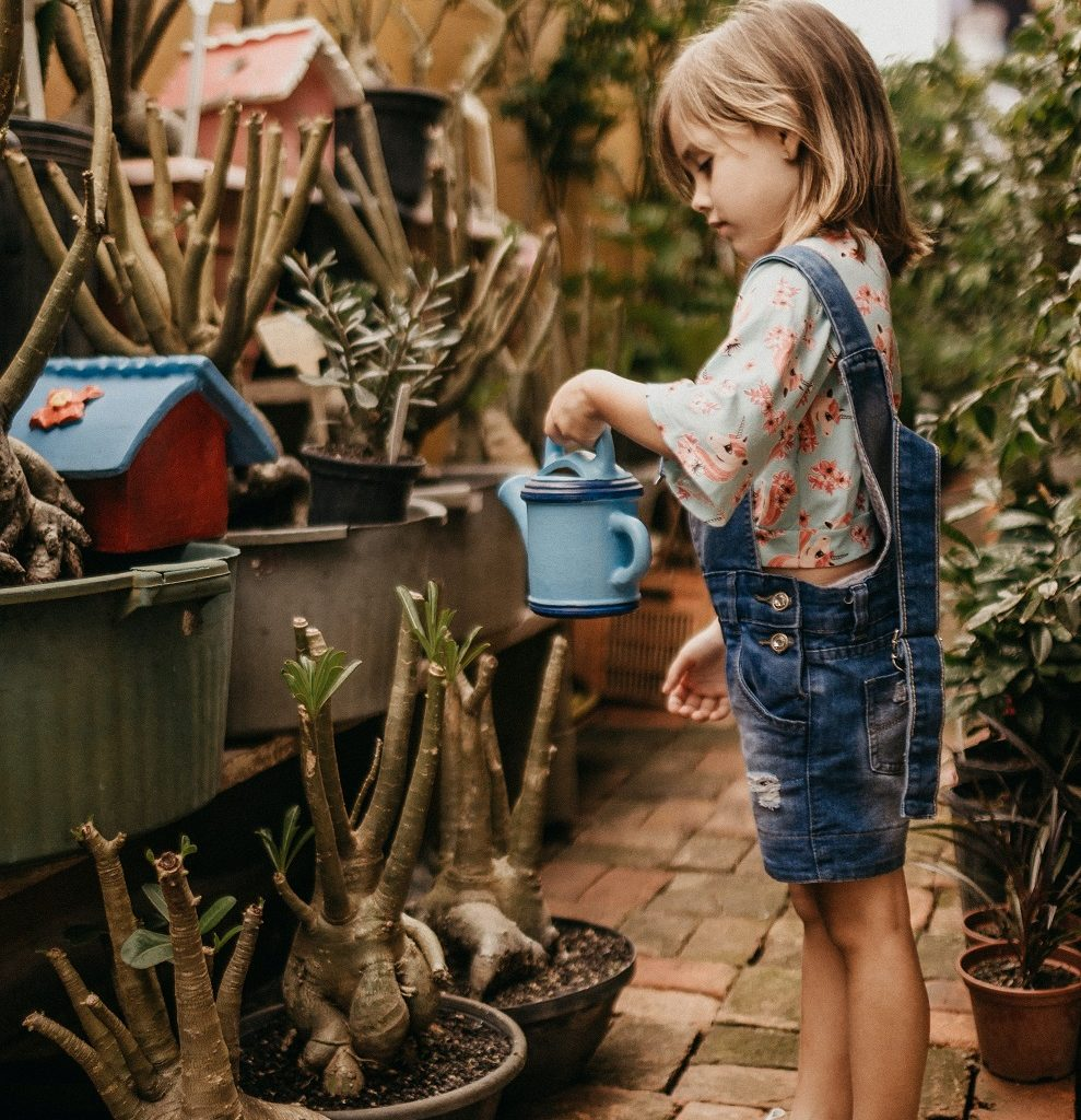 Supporting independence skills at home